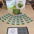 画像1: 《Topiary/トピアリー 和訳付輸入版》 (1)
